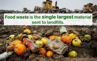 Food: The big waste problem of the year for 2021?