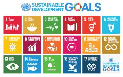 Leading the Way on the SDG's: A New Era for Responsible Business