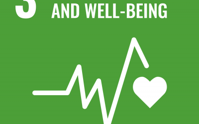 SDG 3: Good Health and Well-being | Brave New World