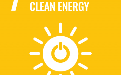 SDG7: Affordable and Clean Energy   Brave New World