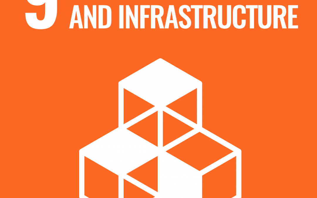 SDG 9: Industry, Innovation and Infrastructure | Brave New World