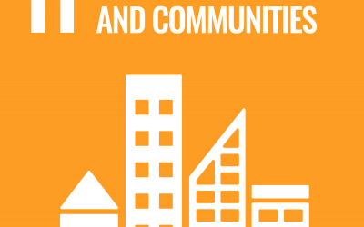 SDG11: Sustainable Cities and Communities   Brave New World