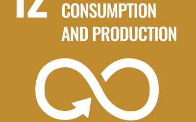 SDG 12: Responsible Consumption and Production   Brave New World