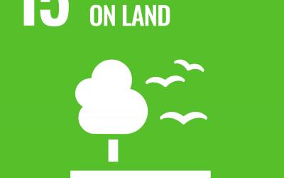 SDG 15: Life on Land   Brave New World