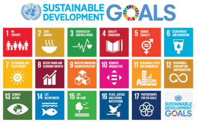 What Are Sustainable Development Goals and How Can Businesses Use Them?